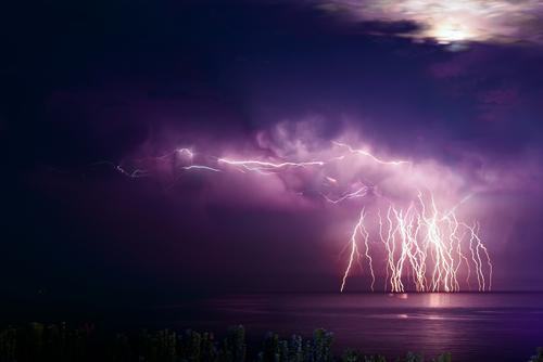 雷 海 泳ぐ 感電